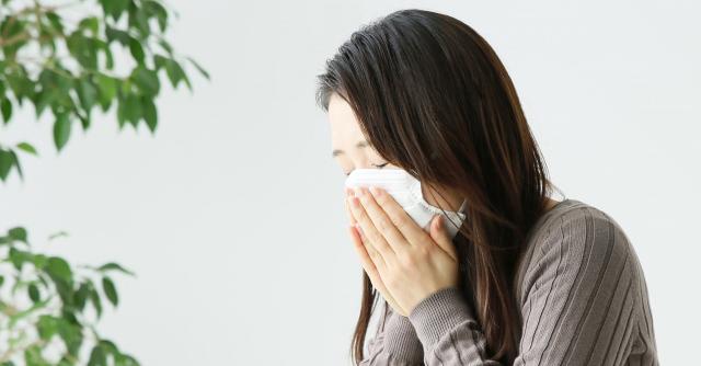 花粉対策は「ウェット掃除」が新常識
